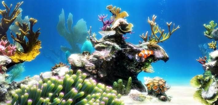 Важные параметры воды для аквариума