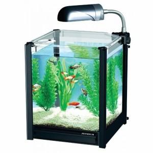 Как правильно выбрать место для аквариума