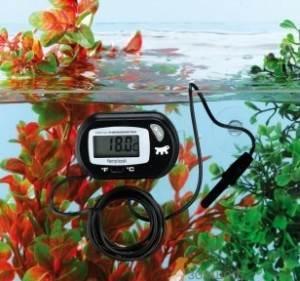 Электронные термометры для аквариума