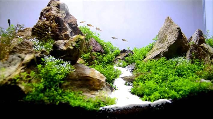 Водопад в аквариуме своими руками - это очень просто! 26