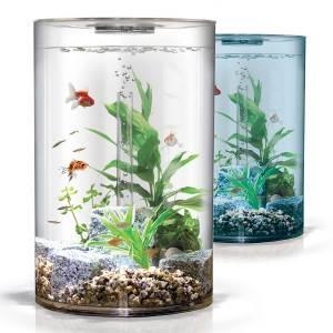 Карантин для аквариумных рыбок