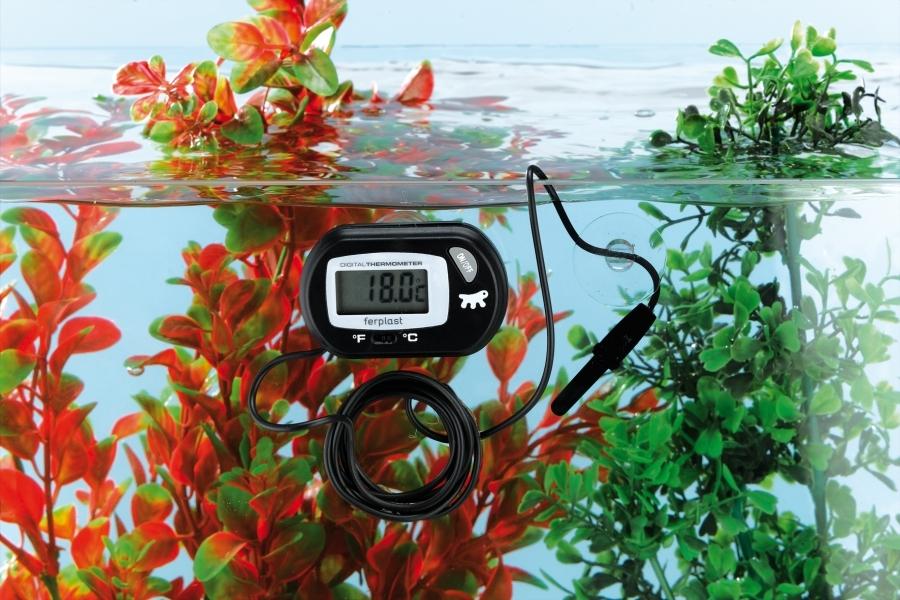 temperaturu-vody2