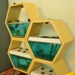 modulnyy-akvarium