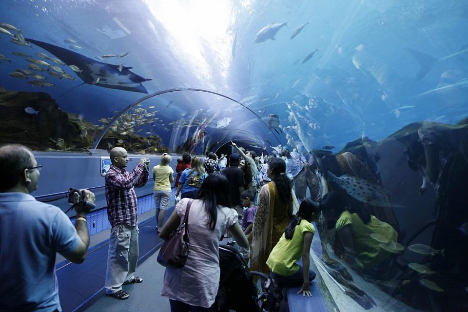 Georgia.Aquarium.640.32564